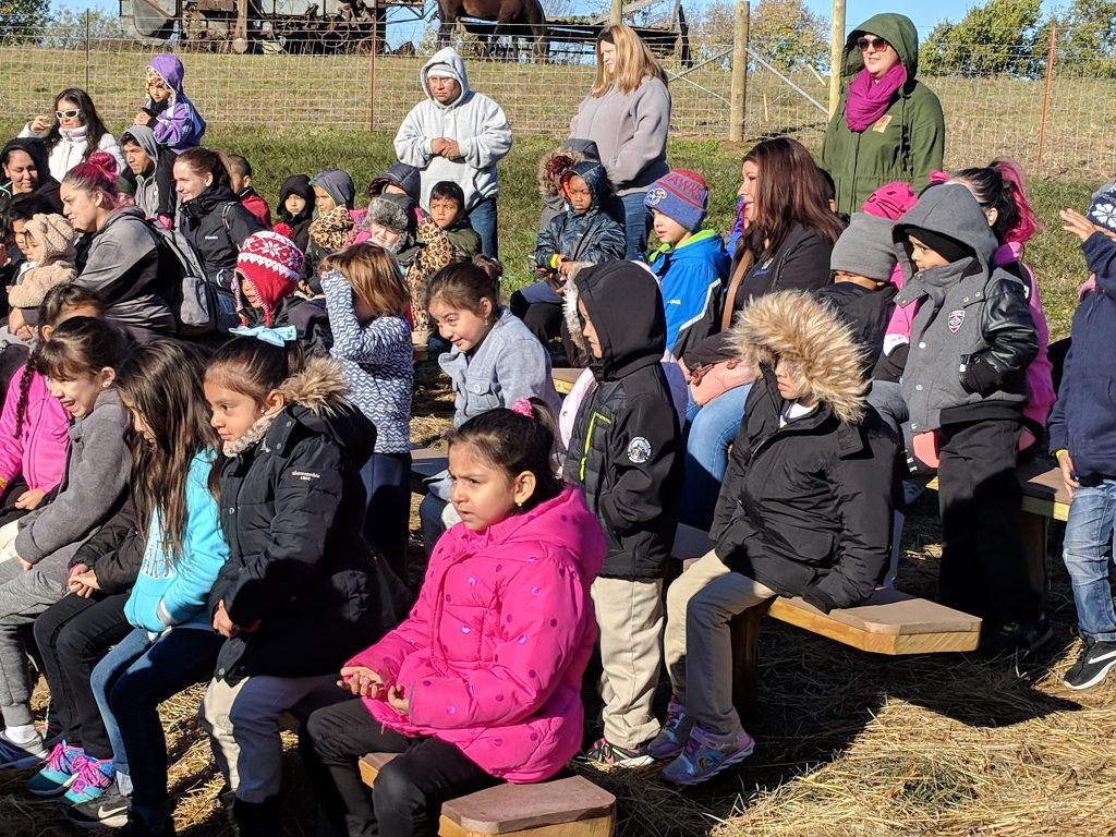 Students watch a barnyard show at Weston Red Barn Farm.